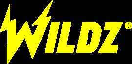 wildz-casino-logo-transparent